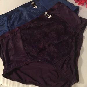 2 Pairs NWT Torrid size 2 Sexy Brief Panties